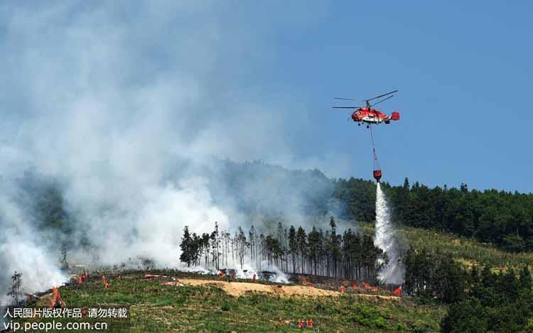 重庆市森林火灾扑救综合演练在沙坪坝区虎峰山举行