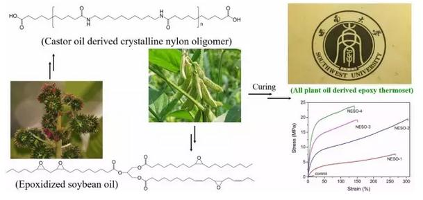 热固性环氧大豆油树脂高性能化方面系列研究进展
