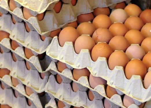 欧洲毒鸡蛋没有进入中国内地市场