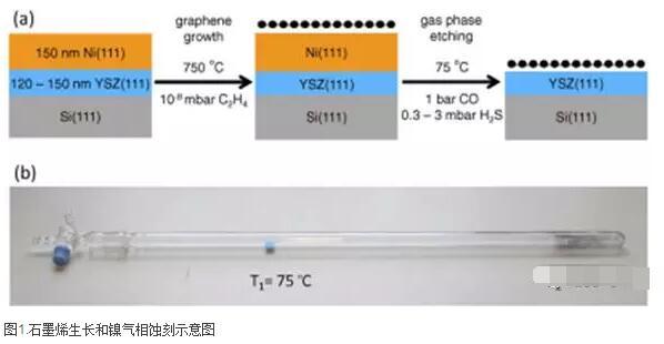 来自单晶镍膜CVD生长石墨烯通过纯气相反应分离