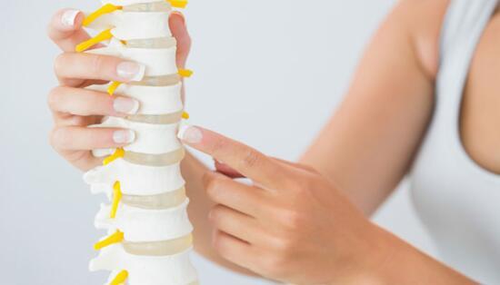 科学家声称已经发现了新的骨再生模板