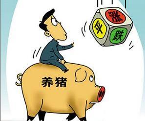 分析猪价的走势,把握猪出栏的时机
