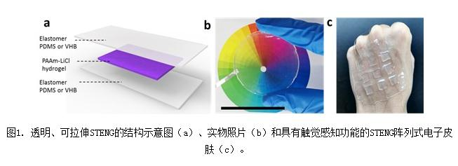 一种全新的仿皮肤式纳米摩擦发电机(STENG)高透明度与可拉伸性