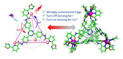 最高发光量子产率的镧系超分子四面体