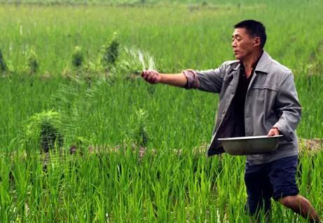 常用肥料技术问题解析