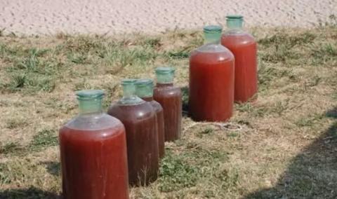 光合细菌在养殖,种植,污水处理上的应用