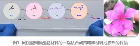 """首次利用""""一锅法""""高效制备了具有自愈合性能的嵌段型聚碳酸酯共聚物材料"""