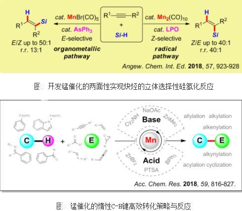 一系列锰族金属催化的高效有机合成转化新反应、新方法