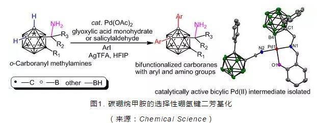 首次实现碳硼烷甲胺的选择性硼氢键功能化