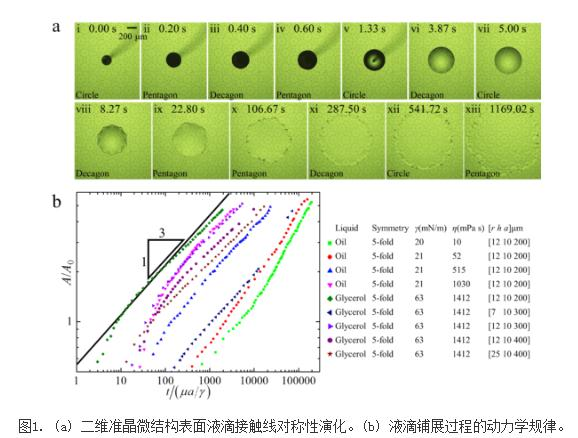 揭示准晶微结构表面的润湿动力学机理