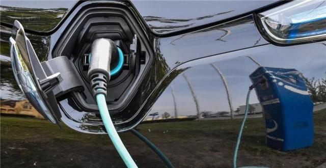 基石资本董事长张维:在中国并没有任何一家新能源造车企业值得投资