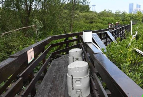 云南:禁止在国家湿地公园范围开发建设光伏发电项目