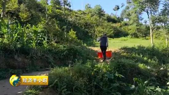 云南宣威农村饮水工程成摆设,78岁老人、8岁孩童到村子外挑水吃