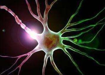 抑制交感神经活跃度可有效控制乳腺癌复发