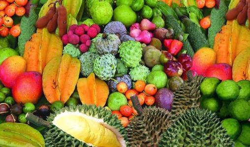 进口水果发展势头迅猛 液氮速冷技术锁住营养成分是关键