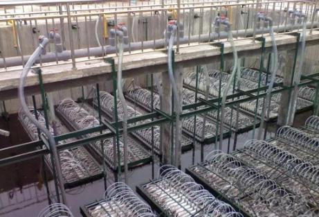 废水处理中MBR膜法适用那些类型?不适用那些类型?