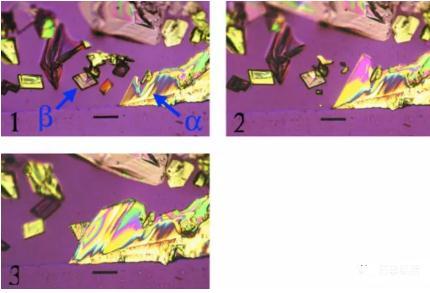 光学显微镜在制药中的应用(内含偏光显微镜的使用方法与要点)