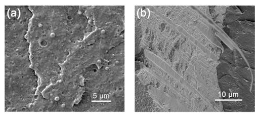"""基于高分子合成材料3D打印技术可制作出""""完美的颅骨"""""""