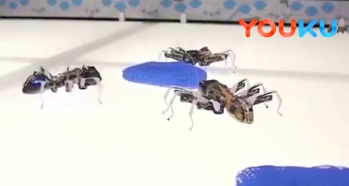 德国机器人公司Festo推仿生机器人,从大自然中获得启迪