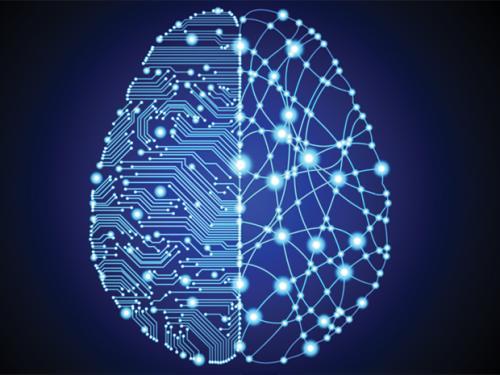 神经形态芯片建造硅脑,生物学家欲建立功能完备的人脑复制品