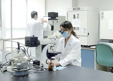 美研发透光率高达90%透明木材材料 有望替代传统玻璃