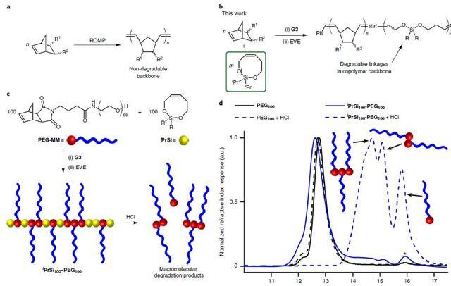 MIT合成出易于降解的聚降冰片烯共聚物 为生物材料合成提供新策略