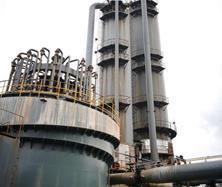 高硫容抑盐技术