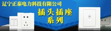 辽宁正泰电力科技有限公司