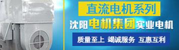 沈阳电机集团实业电机有限公司