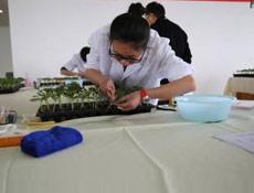 森林资源管理与监测工程技术人员培训