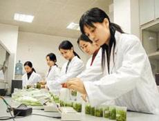 农药检测服务