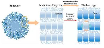 聚丁烯-1的结晶及晶型转变方向取得重要进展