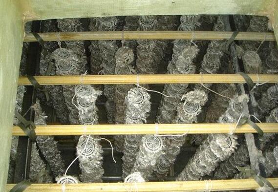 有机废气常见处理方法及微生物处理技术