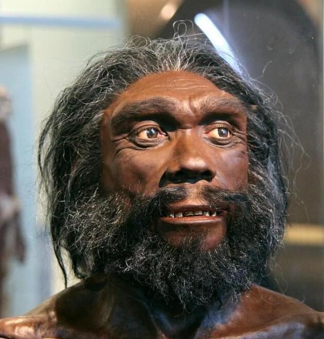 一百万年以后人类该会是什么样子?