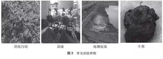 污泥和餐厨垃圾协同处理工程厌氧消化系统的启动调试