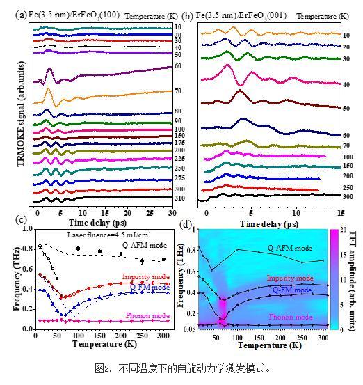 稀土-铁氧化物的超快磁光效应研究进展