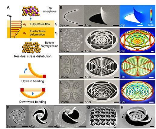 基于形貌诱导应力自平衡和闭环形变的纳米剪纸技术