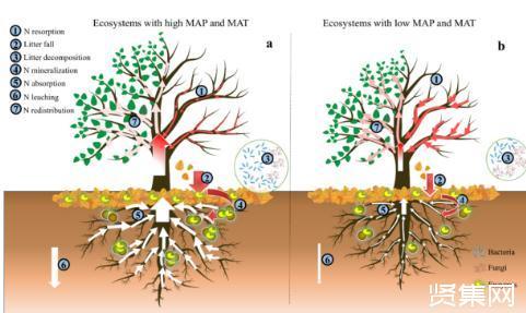 全球水平的植物数据库和微生物数据库