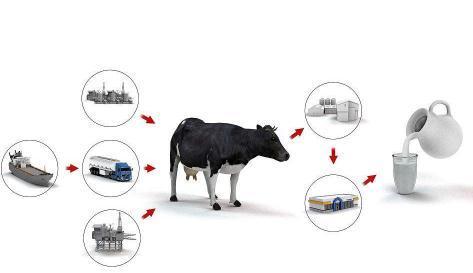 全国数字奶业信息服务云平台启动,探讨中国奶业发展方向和实现路径