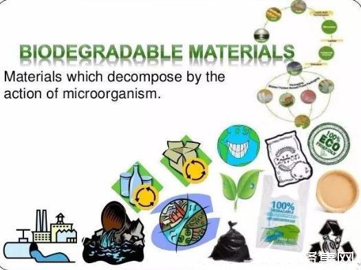 张万虎:石墨烯/淀粉基生物全降解塑料制造技术替代通用塑料产品