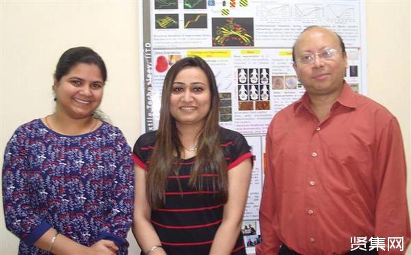 ?印度理工学院研究团队通过添加甲状腺激素来3D打印软骨
