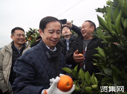 重庆脐橙产业:阿里生态脱贫战略与实施效果