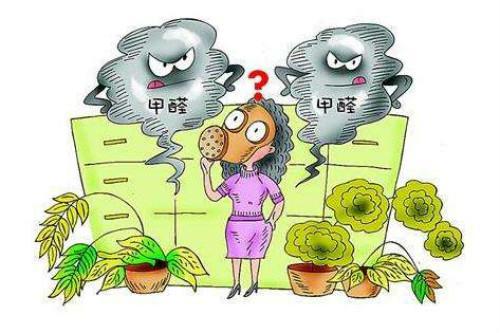 室内环保行业前景如何?