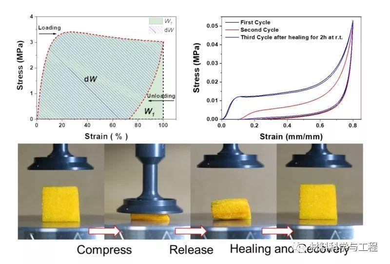 李承辉和左景林等教授利用强弱配位键结合,研发出高弹性自修复材料