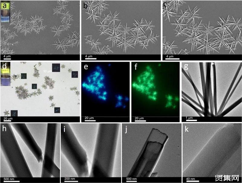 ?扬州大学孙燕课题组等人构建出结构、性质可调整的超分子软材料