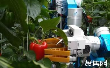 农业机器人研发使用过程及应用推广现状