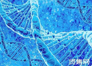 修复DNA损伤,科学家从植物中找到新线索并揭示了解离酶背后的催化机制