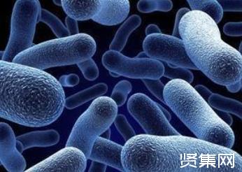 中国科学院生物资源目录正式发布,共汇集700万份生物资源数据