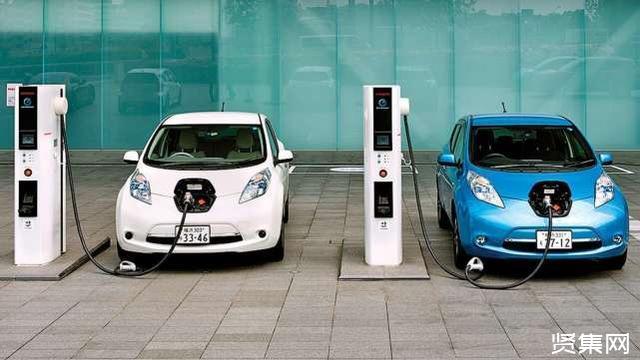 锂电池具有局限性和不稳定性,榴莲或将成为新型替代品?