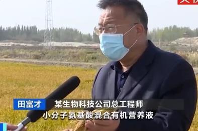 《【欧亿注册链接】袁隆平团队沙漠海水稻亩产超千斤 盐碱地改良起成效》